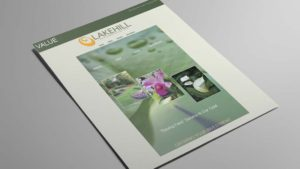 landscape-company-flyer-sell-sheet-design-big-hit-creative