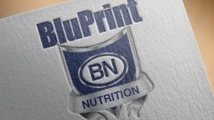 BluPrint Nutrition Supplement Logo Design